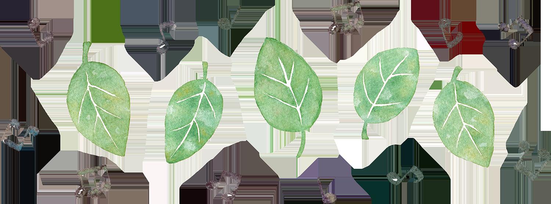 葉っぱと音符の水彩イラスト