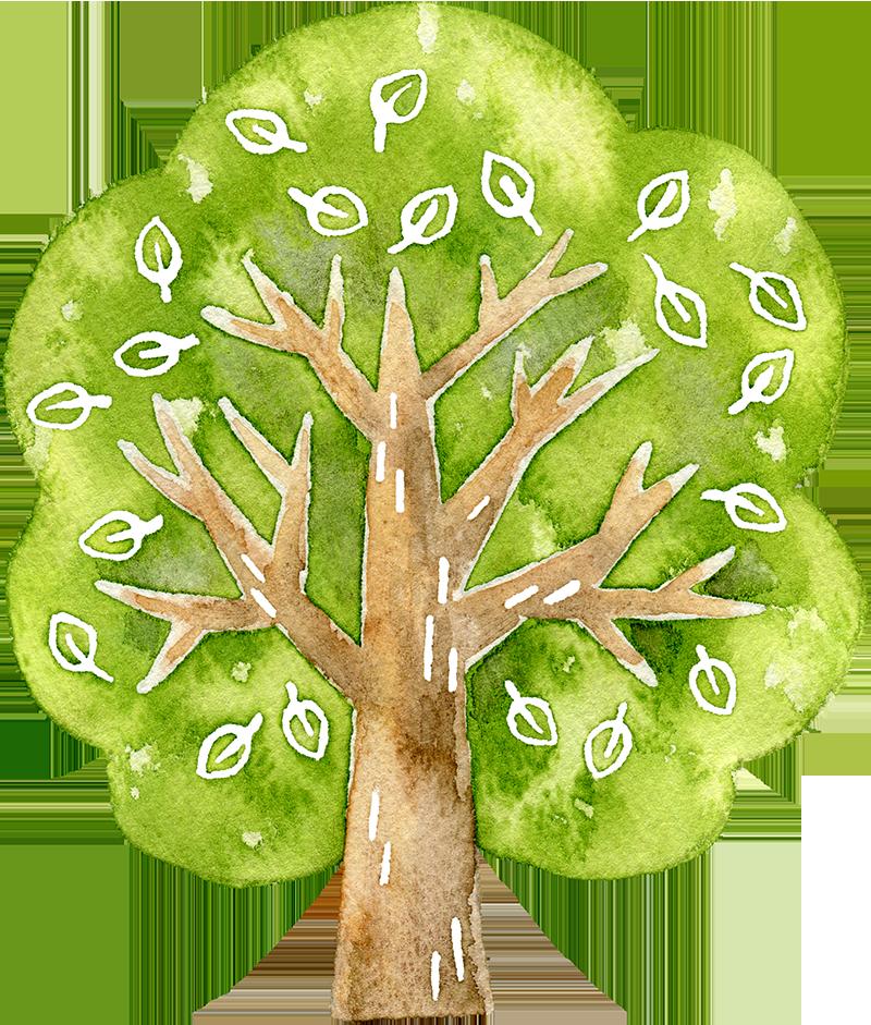 木の水彩イラスト