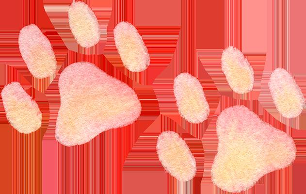犬の足跡(ピンク)の水彩イラスト