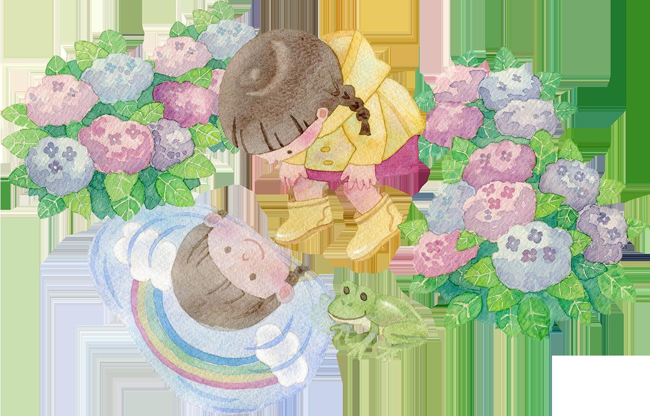 水たまりをのぞく女の子(紫陽花つき)の水彩イラスト