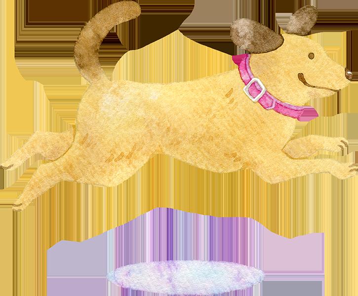 ジャンプをする犬の水彩イラスト